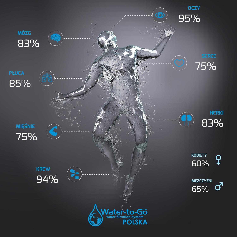WTG_infografika.jpg